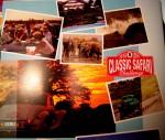 Classic safari 002