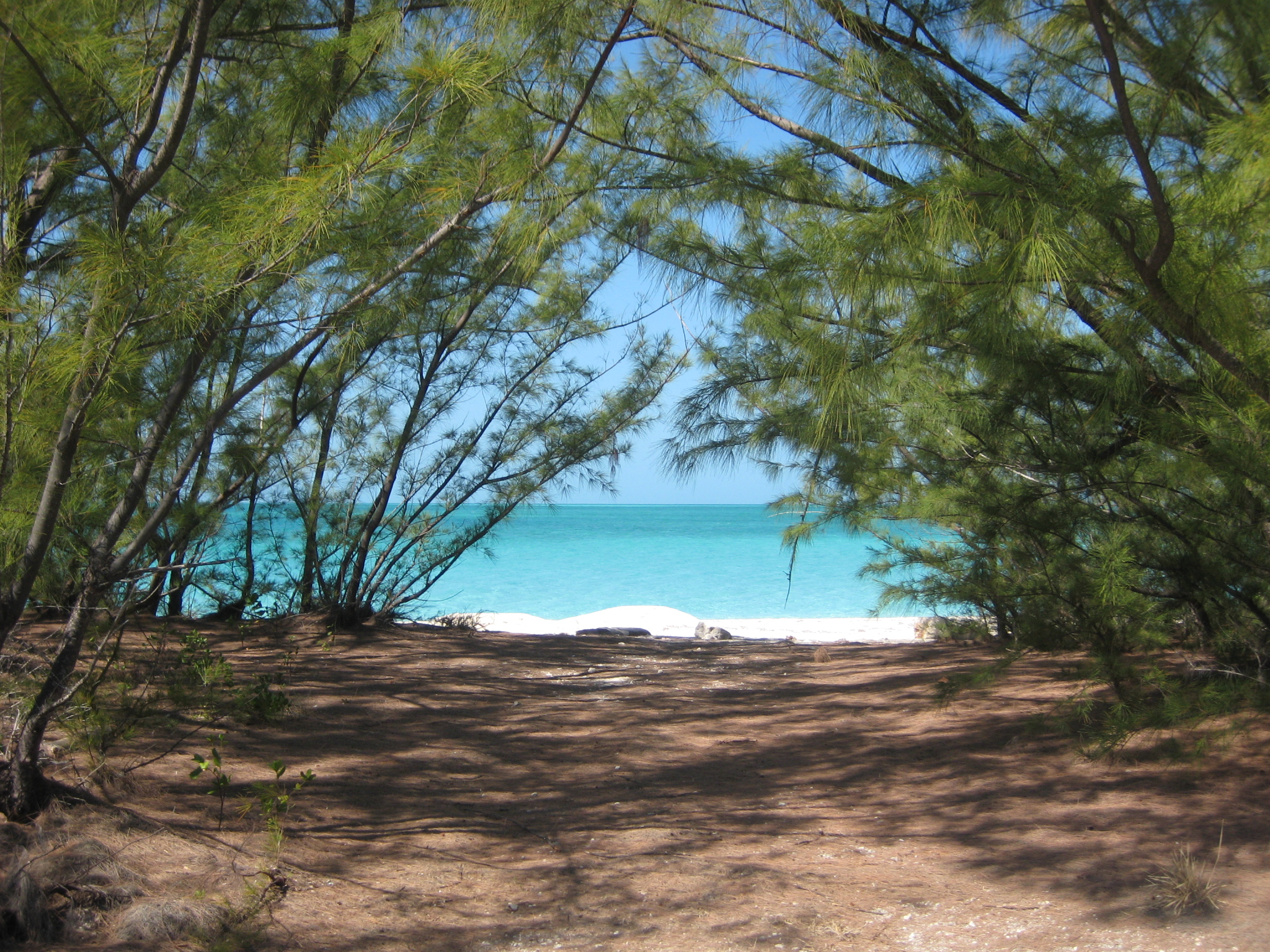 History of Normans Cay | Janet Howle-Author